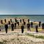 Aujourd'hui ! Concert de Midi Trente – Choeur de chambre philharmonique estonien, Kaspars Putniņš